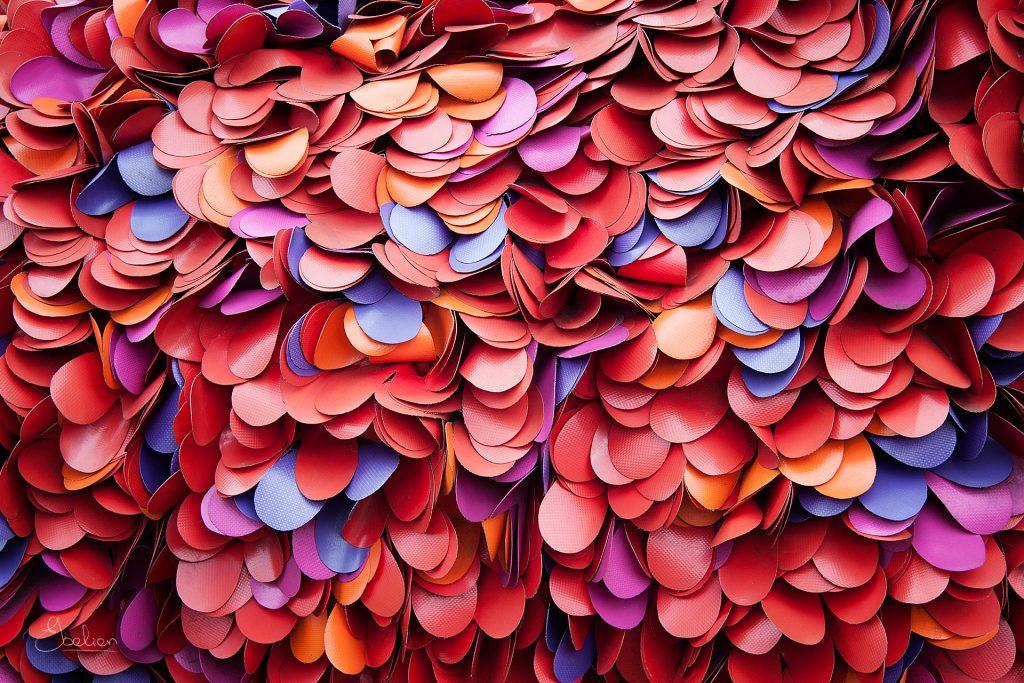 Kleurenschaap